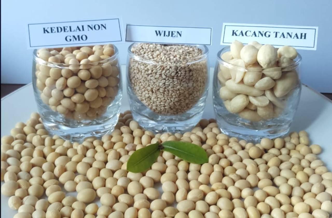 tempe-kacang-tanah
